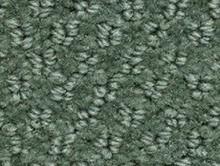Aquarelle Lichen | Kreş-Anaokul