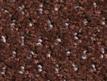 Balmora Chocolat | Kreş-Anaokul