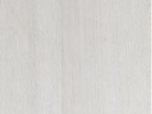 Beyaz Kayın | Kreş-Anaokul