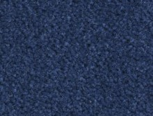 Majestic Fructueux | Karo Halı