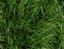 Relax Yeşil | Çim Halı | Associated Carpets