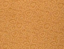 sedef 5 | Duvardan Duvara Halı