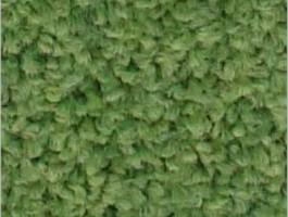Fıstık Yeşil